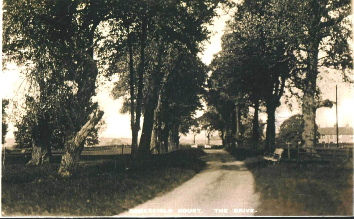 summerfield court driveway towards main road in the 1900's